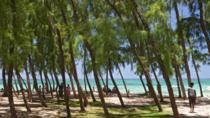 Shore Excursion: Half Day Beach Tour, Port Louis, Ports of Call Tours