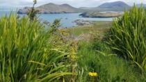 4-Day Kingdom of Kerry Tour from Dublin, Killarney