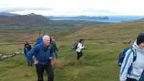 Dingle and Slea Head Day Tour from Killarney, Killarney, Private Sightseeing Tours