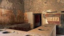 4-Hour Excursion to Pompeii from Sorrento, Sorrento, Private Transfers