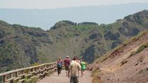 4-Hour Mt Vesuvius Tour from Sorrento, Sorrento, Bus & Minivan Tours