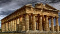 Salerno and Paestum Day Tour from Sorrento, Sorrento, Bus & Minivan Tours