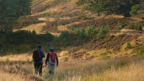 3 Day Tour: Highlands of Scotland Whisky and Hiking, Inverness, Hiking & Camping