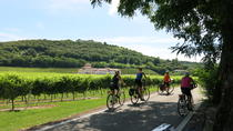 Tour del vino biologico in bicicletta, Verona, Bike & Mountain Bike Tours