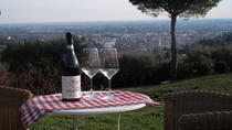 Wine with view E-bike tour, Verona, Bike & Mountain Bike Tours