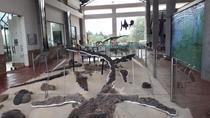 Centro de Investigaciones Paleontologicas - CIP Admission Ticket, Colombia, Attraction Tickets
