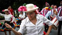 4-Day Frankfurt Festival: Parade of Cultures - Parade der Kulturen, Frankfurt, 4-Day Tours