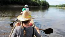 3-Day Wildlife Tour in the Amazon from Iquitos, Peru, Iquitos, Multi-day Tours