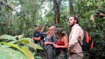 4-Day Wildlife Adventure in Pacaya-Samiria Reserve from Iquitos with Amazon Explorer, Iquitos,...