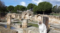 Ancient City Of PAPHOS, Nicosia, Day Trips