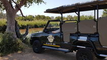 Kruger National Park Full Day Safari, Kruger National Park, Attraction Tickets