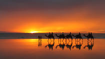 From Taghazoute : 2 Hours Agadir Camel Ride With Transfers and Tea Break, Agadir, Nature & Wildlife