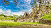 Private Tour of Altun Ha Zip line and Belize Zoo, Belize City, Private Sightseeing Tours