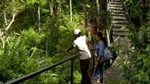Ebony Forest Reserve Chamarel Classic Visit, Port Louis, Attraction Tickets