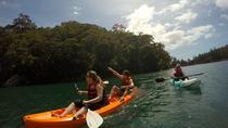 Explore Pittwater on a Double Kayak, Sydney, Kayaking & Canoeing