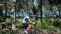 Biking at Thai Muang - Turtles & Waterfalls, Phuket, City Tours