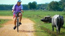 Koh Yao Noi Full Day Tour with Bike Ride & Lunch, Phuket, Full-day Tours