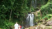 Waterfall and Hot Springs Mud Bath Tour in Rincon de la Vieja, Playa Hermosa, Day Trips