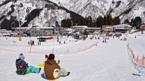 Sledding Experience,Strawberry Picking and Crab Lunch Buffet from Tokyo, Tokyo, Ski & Snow