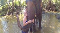 Elephant Care & Grand Canyon Jumping, Chiang Mai, 4WD, ATV & Off-Road Tours