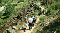 Hiking tours in parks and natural spaces in the province of Cádiz, Andalucia, Hiking & Camping