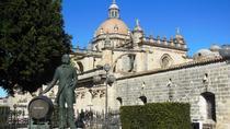 Jerez, City Walking Tour with Flamenco and wine cellar, Cádiz, Flamenco