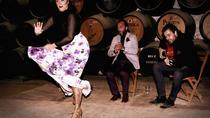 Jerez de la Frontera: Flamenco & Tapas Tour, Cádiz, Flamenco