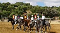 Trip to an Andalusian Bull and Horse farm and visit Medina Sidonia, Cádiz, Cultural Tours