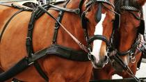 Horse carriage tour, Malaga, Horse Carriage Rides