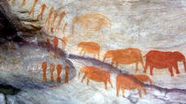 Drakensberg Kamberg Cave Paintings and Nelson Mandela Capture Site from Durban, Durban, Day Trips