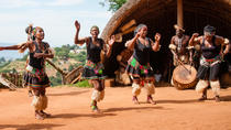 Phezulu Cultural Village and Reptile Park Tour from Durban, Durban, Day Trips