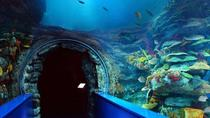 Admission Ticket: Sharjah Aquarium & Maritime Museum, Sharjah, null