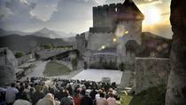 Celje Castle Entrance Ticket, Slovenia, Attraction Tickets