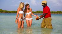 Pigeon Creek Pontoon Boat Tour and Snorkeling at High Cay, San Salvador Island, Day Cruises
