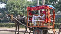 Same Day Taj Mahal and Agra Tour from Chennai with Return Flights, Chennai, Private Sightseeing...