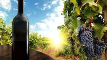 Premium Wine Region Private Guided Full-Day Tour, Tbilisi, Full-day Tours