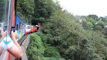 Curitiba City Tour and Rail Train Tour in Morretes, Curitiba