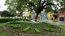 Private City Tour of Curitiba: Parks and Old Town, Curitiba