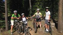 Bend Family Mountain Bike Tour, Bend