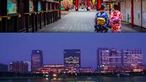 Traditional Japanese Tour and Cruise, Tokyo, Day Cruises