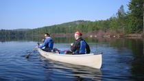 4-Day Algonquin Park Canoe Trip, Ottawa, Multi-day Tours