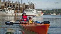 Kayaking Eco Tour on the Bay of Fundy, Saint John, Kayaking & Canoeing