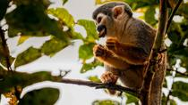 Cuyabeno Wildlife Reserve Adventure 4 days, Amazon, 4WD, ATV & Off-Road Tours