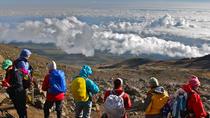 8 Days Kilimanjaro Climbing - Lemosho Route, Arusha, Climbing