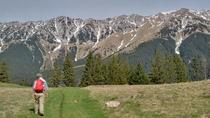 4-Day Carpathian Trek: Bucegi Mountains and Piatra Craiului National Park