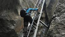 Day Trip to the Epic 7 Ladders Canyon from Brasov, Brasov, Day Trips