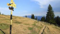 Small-Group Piatra Craiului National Park Hiking Tour from Brasov, Brasov