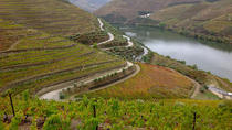 DOURO VALLEY FULL DAY WINE EXPERIENCE, Northern Portugal, Cultural Tours