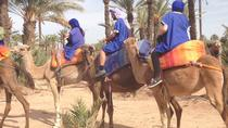 Marrakech Half-Day Camel Ride in Palm Grove, Marrakech