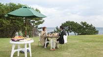 Breakfast at Tanesashi Coastal lawns Park and Cycling, Sapporo, City Tours